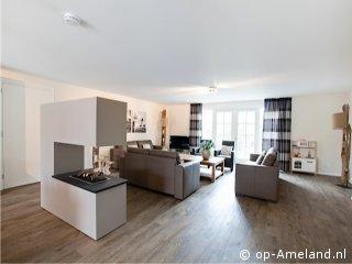 Ferienhaus Friga Auf Ameland Offene Wohnkuche Mit Wohnzimmer